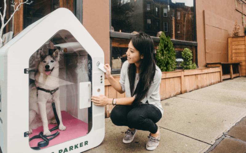 dog-parker-796x398